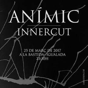 Concert Anímic + Innercut
